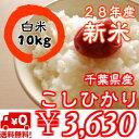 【28年産】新米入荷!千葉県産菜の花こしひかりつきたて白米10kg(5kg×2)※送料無料※※送料無料地域に除外があります※北海道・九州:+400円