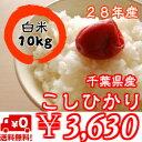 千葉県産菜の花こしひかり【28年産】つきたて白米10kg(5kg×2)※送料無料※※送料無料地域に除外があります※北海道・九州:+400円