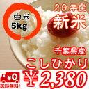 【29年産】新米入荷!千葉県産 コシヒカ...