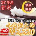 【29年産】新米入荷!千葉県産 ふさおとめ 玄米5kg送料無料♪精米無料♪※送料無料地域