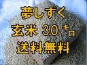 【30年産 新米 特A】【1等米限定】夢しずく【送料無料】【...