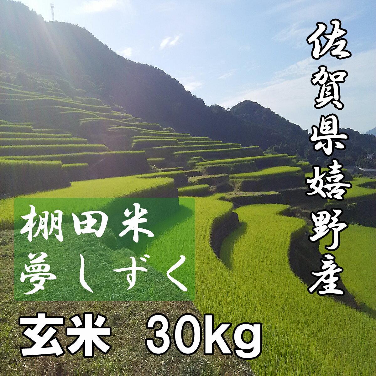【29年産 特A】【送料無料】佐賀県嬉野産 棚田米 夢しずく 玄米30kg