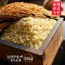 佐賀県産もち米 ヒヨクモチ 玄米 30kg【日本三大もち米処 佐賀より産地直送