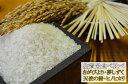 【令和元年産】 佐賀県産の米 食べ尽くし 5kg×4点セット【ヒノヒカリ、夢しずく、天使の詩、さがびより】【SS05P03mar13】
