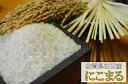 【送料無料 一部地域除く】【令和元年産 新米】九州 佐賀県白石産 にこまる 5kg×2 【05P05Apr14M】
