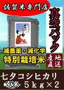 産地直送【30年産 新米発売開始】【玄米5kg×2 真空パッ...
