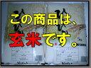 【玄米】【28年産 新米】 佐賀県白石産森さんちのヒノヒカリ 5kg×2【05P06jul13】