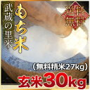 【新入荷】武蔵の里米 もち米 玄米30kg(精米無料)(農家直米)(送料無料 但し北海