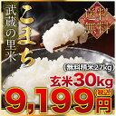【新入荷】旬米 武蔵の里米こまち 玄米30kg(精米無料)(送料無料 但し北海道 九州 四国 沖縄を