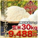 武蔵の里米 ワンランク上のお米 玄米30kg(精米無料)(農...