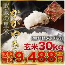 武蔵の里米 かがやき 玄米30kg(精米無料)(農家直米)(...