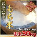 【新入荷】武蔵の里米 もち米 玄米30kg(精米無料)(農家直米)(送料無料 但し北海道 九州 四国
