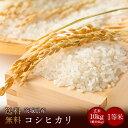 令和元年度産 茨城県産コシヒカリ 玄米10kg(精米無料)(...