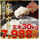 武蔵の里米 かがやき(農家直米)(送料無料 但し北海道 九州 四国 沖縄を除く)