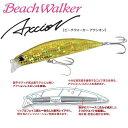 【Beach Walker × 堀田光哉 最強のヒラメコラボ】