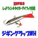 【メール便可】ラパラ【アイスジグ】ジギングラップWH WH3...