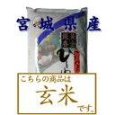 《24年産【新米】一等米100%使用》【玄米】宮城県登米産ひとめぼれ 5kg