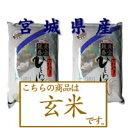 《24年産【新米】一等米100%使用》【玄米】宮城県産ひとめぼれ  5kg×2個