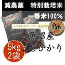 ≪29年産 新米≫特別栽培米(減農薬・減化学肥料) 一等米 新潟県魚沼産コシヒカリ5kg×2個(10kg)