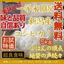 (S)【 お米 5kg 平成 29年産 新米 新潟県産 こしひかり お試し 】 一等米 100% 新...