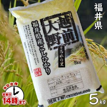 【こめひこ米】越前大野 福井コシヒカリ 5キロ【あす楽対応】】白米・玄米・3分搗・7分
