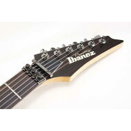 IBANEZ RGT220A