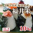 令和2年産 福井県産10割 福井米 ブレンド米 10kg 人気商品 お得米 白米 安い 10kg×1 送料無料
