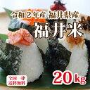 令和2年産 福井県産10割 福井米 ブレンド米 20kg 人気商品 お得米 白米 安い 10kg×2 送料無料