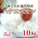 令和2年産 福井県産ハナエチゼン10割 10kg 白米 安い 美味しい ブランド米 送料無料 5kg×2 単一原料米でこの価格!
