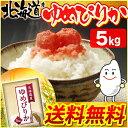 【28年産】北海道産 ゆめぴりか 5kg [送料無料 一等米100% 白米 お米 ご飯 ユメピリカ]【TD】【BT】【BS】【新米】