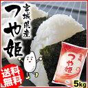 宮城県産 つや姫5kg[送料無料 28年産  白米 お米 ご飯]【TD】【TRS】【メーカー直送品】【あす楽】