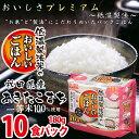 低温製法米のおいしいごはん 秋田県産あきたこまち 180g×10パック 角型 アイリスフーズ 防災 非常食