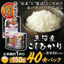 低温製法米のおいしいごはん 魚沼産こしひかり 150g×40食パック パック米 パックご飯 パックご...