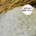 【送料無料 一部地域除く】【令和元年産】 佐賀県産さがびより 白米10kg(【九州産】【米】【お米】