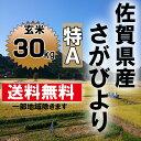 【送料無料】【28年産】【新米】6年連続特A 佐賀県産さがびより 玄米30kg【九州産】【米】【お米】