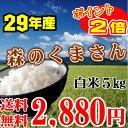 森のくまさん 5kg 送料無料 29年産 熊本県産 【あす楽...