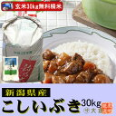 新潟県産こしいぶき(平成28年産)(玄米)30kg【精米無料】【送料無料(本州のみ)】