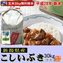 【新米】新潟県産こしいぶき(平成28年産)(玄米)30kg【精米無料】【送料無料(本州のみ)】