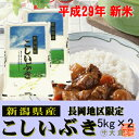 【新米】新潟県産こしいぶき(平成29年産)10kg【送料無料(本州のみ)】