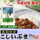 新米 30年産 新潟県産こしいぶき(平成30年産)5kg【送料無料(本州のみ)】