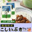新潟県産こしいぶき(平成29年産)10kg【送料無料(本州のみ)】