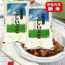 新米令和元年 新潟県産こしいぶき(令和元年産)10kg【送料無料(本州のみ)】