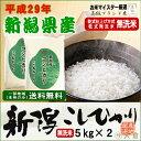 【無洗米(乾式)】新潟県産コシヒカリ(平成29年産)10kg...