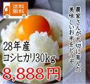 28年 千葉県産 こしひかり 30kg【米30kg 送料無料】【米 30kg 送料無料】 北海道、九州地方は送料(+400円)、沖縄は送料(+2000円)別途かかります【玄米は30kg、精米は約27kg】