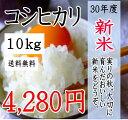 【期間限定ポイント2倍】新米!30年産 千葉県産コシヒカリ1...