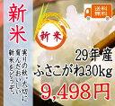 新米!29年 千葉県産ふさこがね 30kg 一等米 【送料無料】【米30kg送料無料】(一部地域を除