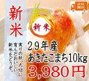 新米!29年 千葉県産あきたこまち10kg×1袋 白米(約9...