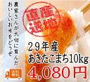 29年 千葉県産あきたこまち10kg×1袋 白米(約9キロ×...