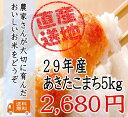 29年千葉県産あきたこまち 5kg♪ピカピカ米☆【送料無料】...