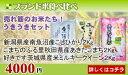 【あす楽_土曜営業】【楽ギフ_のし】★6キロ★BR売れ筋のお...